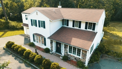 Long Hill Twp Single Family Home For Sale: 730 Meyersville Rd