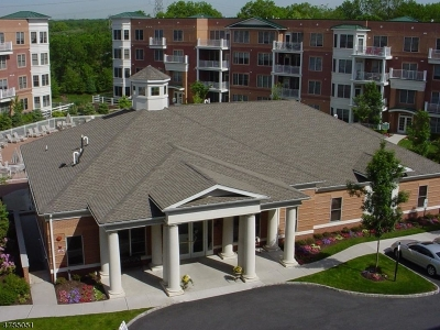 Livingston Twp. Condo/Townhouse For Sale: 3205 Pointe Gate Dr #3205