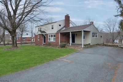 Long Valley Single Family Home For Sale: 361 Fairmount Rd