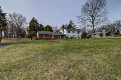 Branchburg Twp. Single Family Home For Sale: 53 Preston Dr