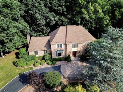 Franklin Lakes Boro Single Family Home For Sale: 704 Somerset St