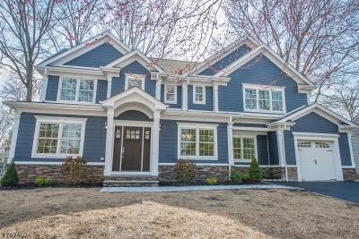 Springfield Single Family Home For Sale: 343 Hillside Ave