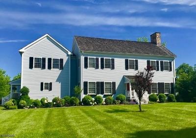 Bernards Twp. Single Family Home For Sale: 6 Laurel Ct