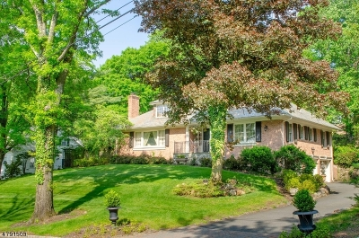 Single Family Home For Sale: 17 Lee Terrace