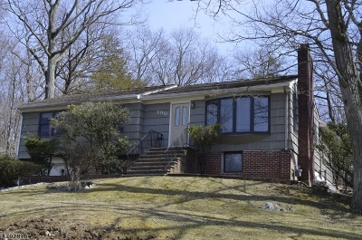 Single Family Home For Sale: 100 Hiawatha Blvd