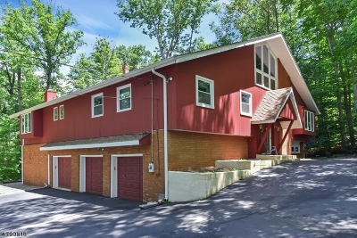 Randolph Twp. Single Family Home For Sale: 10 Iron Forge Ln