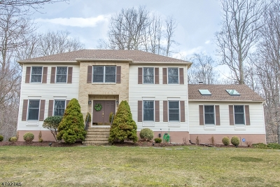 Randolph Twp. Single Family Home For Sale: 23 Winchester Ter