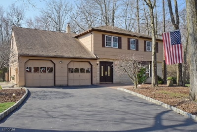 Parsippany Single Family Home For Sale: 9 Quinby Ct