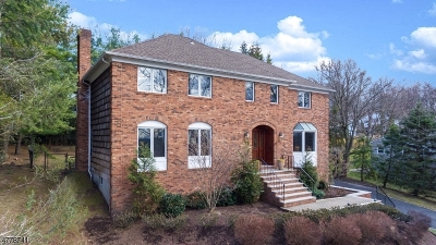 Berkeley Heights Single Family Home For Sale: 109 Burlington Rd