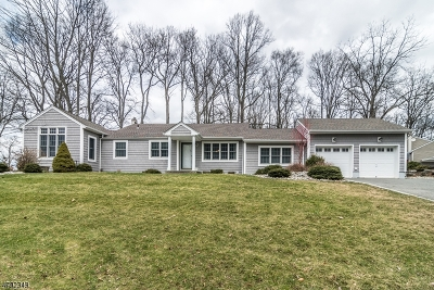 Randolph Twp. Single Family Home For Sale: 42 Lake Dr
