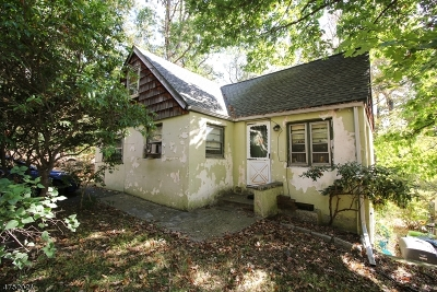 Denville Twp. Single Family Home For Sale: 156 Florence Ave