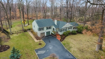 Morris Twp. Single Family Home For Sale: 151 Woodland Ave