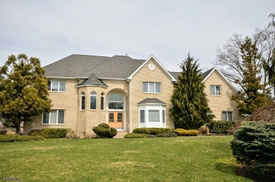Scotch Plains Twp. Single Family Home For Sale: 11 Carri Farm Ct