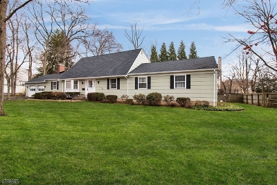 Westfield Town NJ Single Family Home For Sale: $700,000