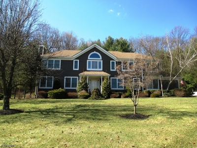Randolph Twp. Single Family Home For Sale: 18 Mount Freedom Rd