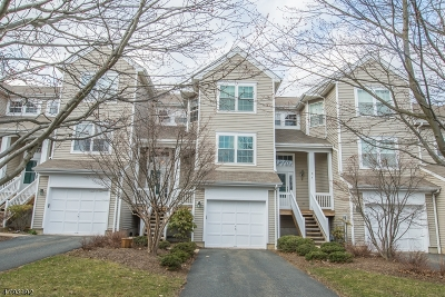 Randolph Twp. Condo/Townhouse For Sale: 6 Sycamore Ln