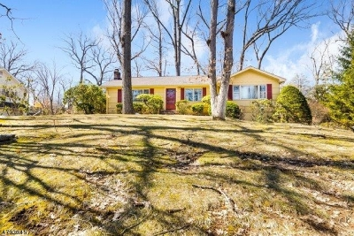 Single Family Home For Sale: 7 Sharon Dr