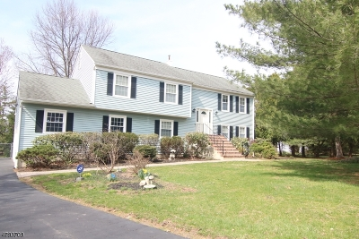 Clinton Twp. Single Family Home For Sale: 7 Charlotte Dr