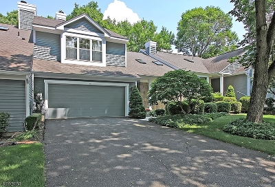 Bedminster Twp. Condo/Townhouse For Sale: 13 Lockhaven Ct