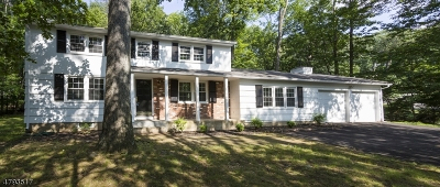 Montville Twp. Single Family Home For Sale: 2 Lake Shore Dr