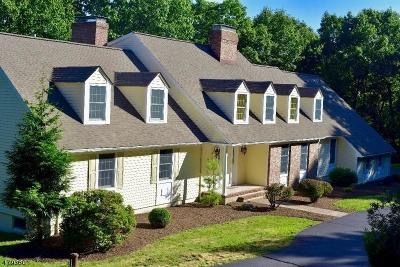 Califon Boro, Tewksbury Twp. Single Family Home For Sale: 47 Philhower Rd