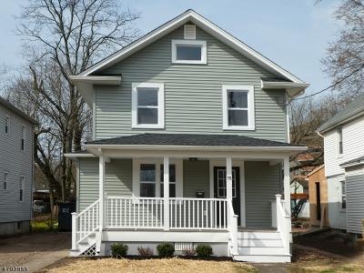 Somerville Boro Single Family Home For Sale: 15 Park Ave