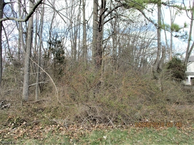 Hillsborough Twp. Residential Lots & Land For Sale: 00 Equator Ave