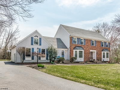 Clinton Twp. Single Family Home For Sale: 6 Windsor Ct