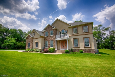 Readington Twp. Single Family Home For Sale: 909 Route 523