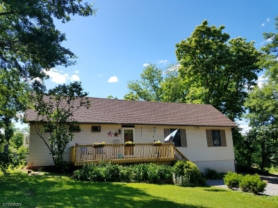 Franklin Twp. Single Family Home For Sale: 100 Sidney Road