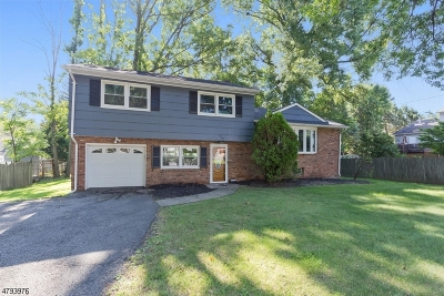 Westfield Town NJ Single Family Home For Sale: $689,500