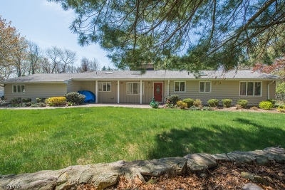 Parsippany-Troy Hills Twp. Single Family Home For Sale: 117 Flintlock Rd