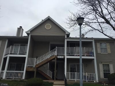 Bridgewater Twp. Condo/Townhouse For Sale: 2610 Doolittle Dr