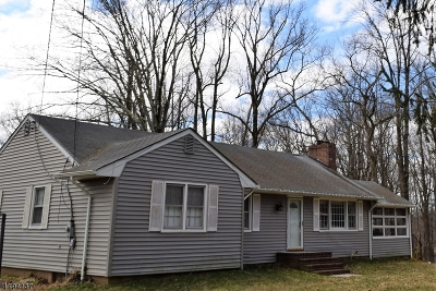 Warren Twp. Single Family Home For Sale: 52 Reinman Rd