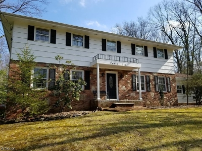 Warren Twp. Single Family Home For Sale: 46 Round Top Rd #1