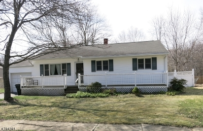 Mount Olive Twp. Single Family Home For Sale: 3 Alden Ter