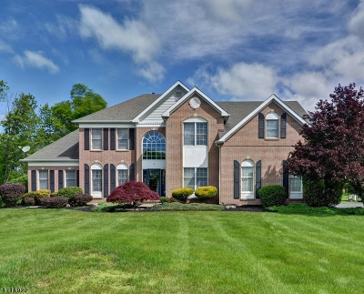 Montgomery Twp. Single Family Home For Sale: 77 Southfield Dr