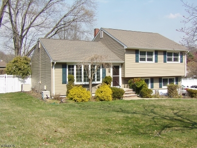 Randolph Twp. Single Family Home For Sale: 5 Comfort Ct