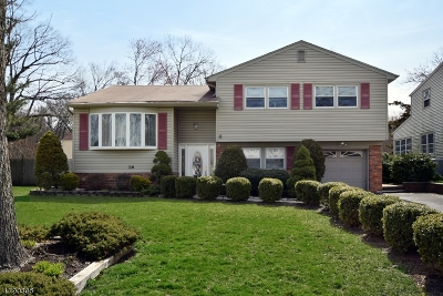 Scotch Plains Twp. Single Family Home For Sale: 2260 Elizabeth Ave