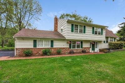 Bernards Twp. Single Family Home For Sale: 177 Riverside Dr