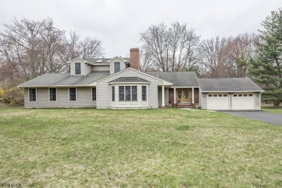Bridgewater Twp. Single Family Home For Sale: 491 Knollwood Dr