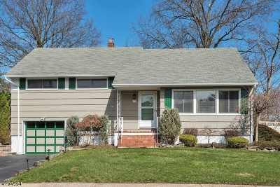 Bloomfield Twp. Single Family Home For Sale: 56 Red Maple Ave