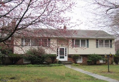 Parsippany Single Family Home For Sale: 38 Ferncliff Rd