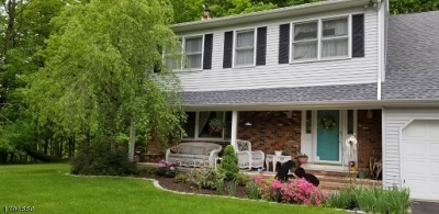 Mount Olive Twp. Single Family Home For Sale: 28 Parkway Dr