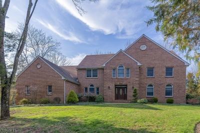 Hillsborough Twp. Single Family Home For Sale: 840 Atkinson Cir