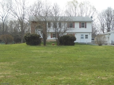 Warren County Single Family Home For Sale: 548 River Rd