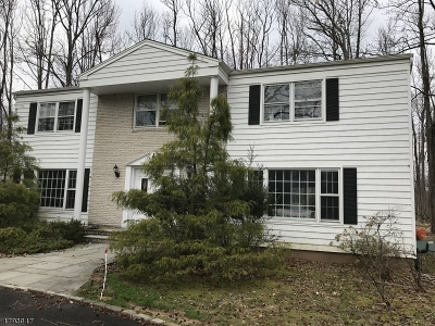 Scotch Plains Twp. Single Family Home For Sale: 11 Laurie Ct