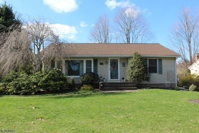 Roxbury Twp. Single Family Home For Sale: 111 Eyland Ave