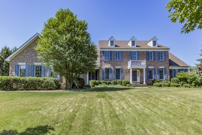 Montgomery Twp. Single Family Home For Sale: 27 Starling Dr