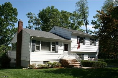 Chatham Boro Single Family Home For Sale: 43 Girard Ave